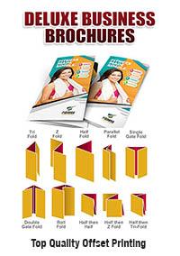 Brochures - Large Qty.